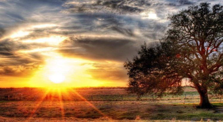 6 Manfaat Sinar Matahari Pagi Yang Luar Biasa